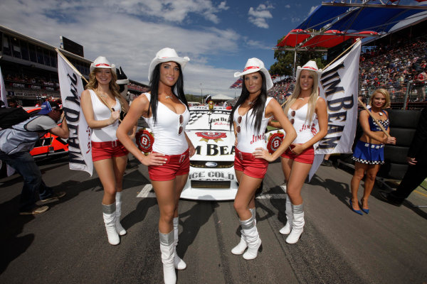 Clipsal 500, Adelaide Street Circuit.Australia. 19th - 22nd March 2009Race 1 grid activity during the Clipsal 500, Event 01 of the Australian V8 Supercar Championship Series at the Adelaide Street Circuit, Adelaide, South Australia, Saturday, March 21, 2009.World Copyright: Mark Horsburgh/LAT Photographicref: Digital Image V8_Clipsal500_092387