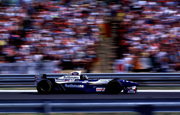 1995 Hungarian Grand Prix.Hungaroring, Budapest, Hungary.11-13 August 1995.Damon Hill (Williams FW17 Renault) 1st position.World Copyright - LAT Photographic
