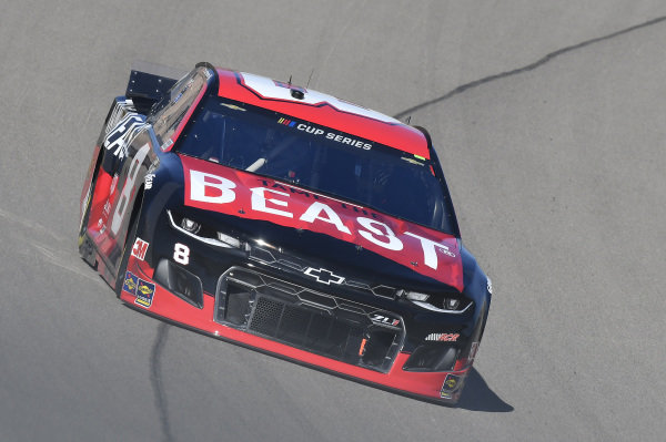 #8: Tyler Reddick, Richard Childress Racing, Chevrolet TAME The BEAST