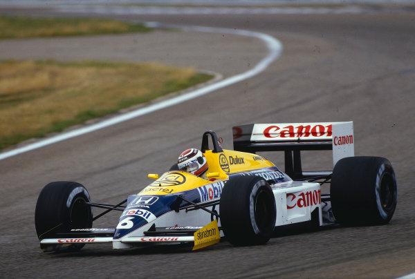 1986 German Grand Prix.Hockenheim, Germany.25-27 July 1986.Nelson Piquet (Williams FW11 Honda) 1st position.Ref-86 GER 31.World Copyright - LAT Photographic