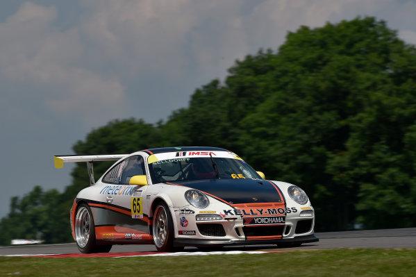 26-29 June, 2014, Watkins Glen, New York USA 65, Frank Selldorff, Gold, M, 2010 Porsche ?2014 Scott R LePage LAT Photo USA