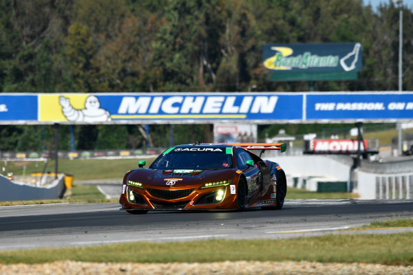 IMSA WeatherTech SportsCar Championship Motul Petit Le Mans Road Atlanta, Braselton GA Thursday 5 October 2017 86, Acura, Acura NSX, GTD, Oswaldo Negri Jr., Jeff Segal, Tom Dyer World Copyright: Richard Dole LAT Images ref: Digital Image RDPLM040