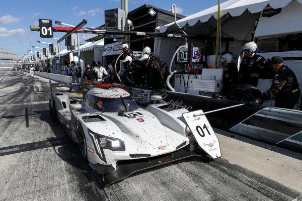 #01 Cadillac Chip Ganassi Racing Cadillac DPi, DPi: Pit Stop, Scott Dixon, Renger van der Zande, Kevin Magnussen