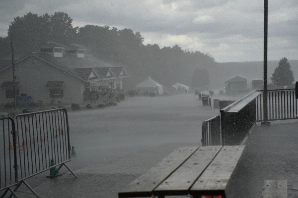 rain in paddock