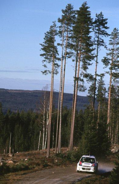 Colin McRae, Ford Focus WRC. 3rd placeSwedish Rally, Sweden 10-13/2/2000World - McKlein/LAT PhotographicRef: 2K WRC 06